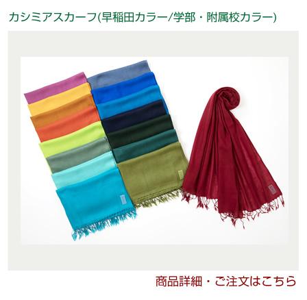 カシミアスカーフ(早稲田カラー/学部・附属校カラー)|早稲田グッズ